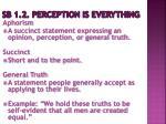 sb 1 2 perception is everything6