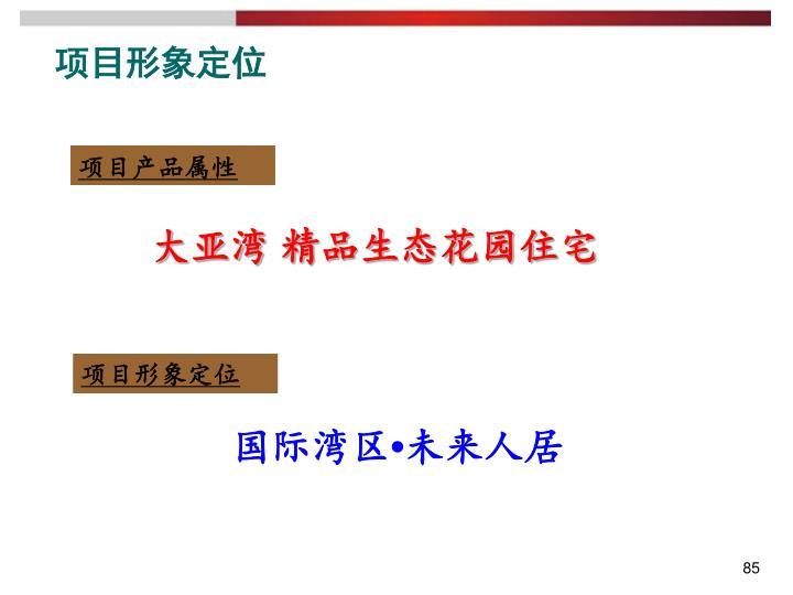 项目形象定位