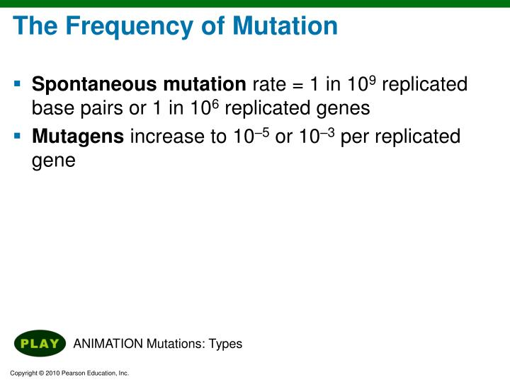 The Frequency of Mutation