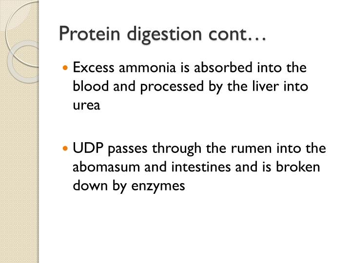 Protein digestion cont…