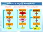 overview of thyroid disease states1
