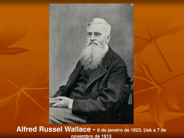 Alfred Russel Wallace -