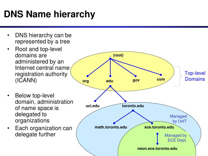 DNS hierarchy can be represented by a tree