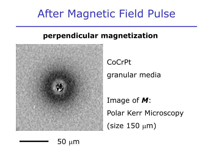 After Magnetic Field Pulse
