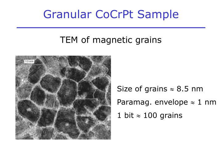 Granular CoCrPt Sample