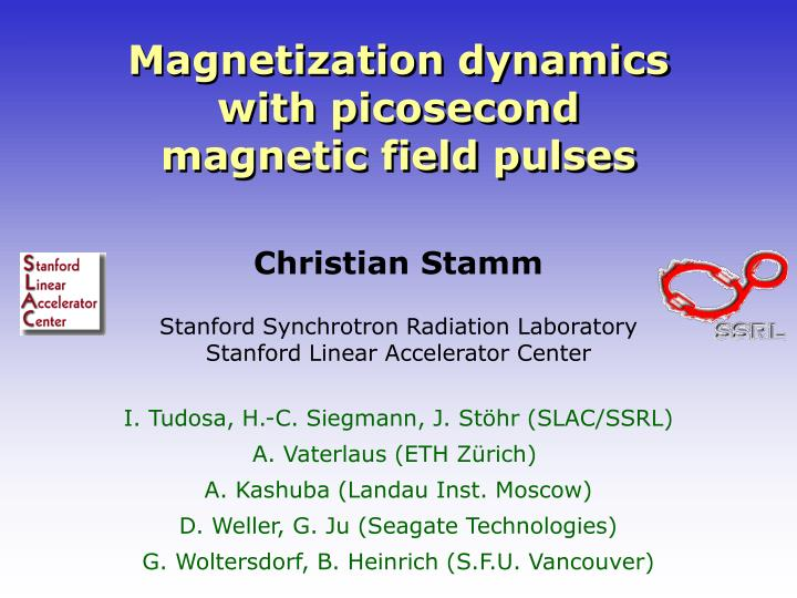 Magnetization dynamics with picosecond magnetic field pulses