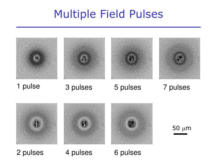 Multiple Field Pulses