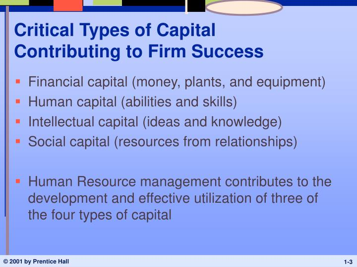 Critical types of capital contributing to firm success