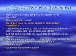 a typical wrf run overview