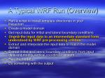 a typical wrf run overview1