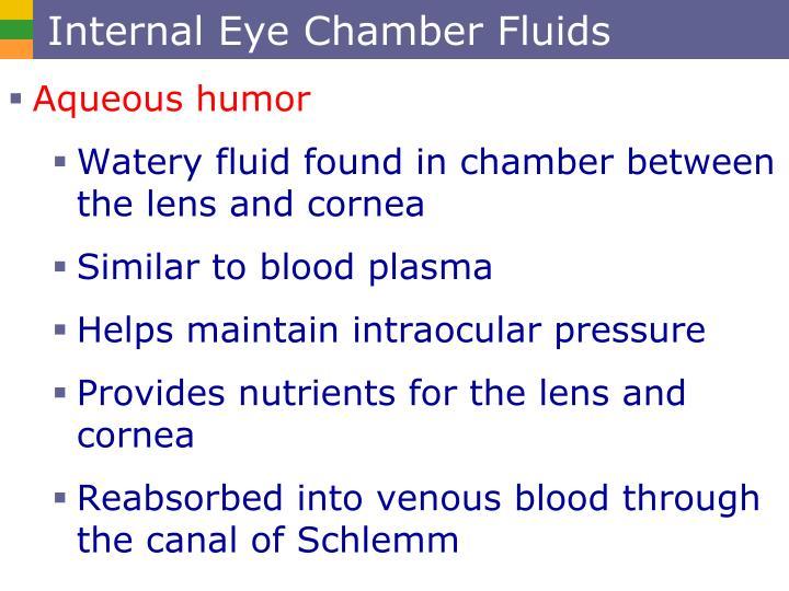 Internal Eye Chamber Fluids