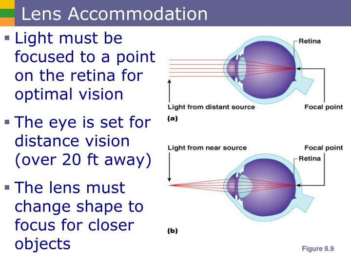 Lens Accommodation