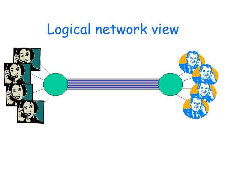 Logical network view