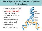 dna replication occurs in s portion of interphase