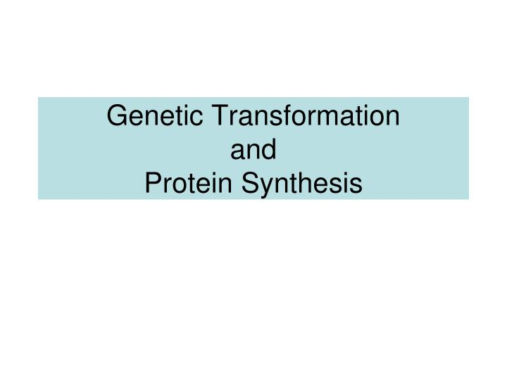 genetic transformation and protein synthesis n.