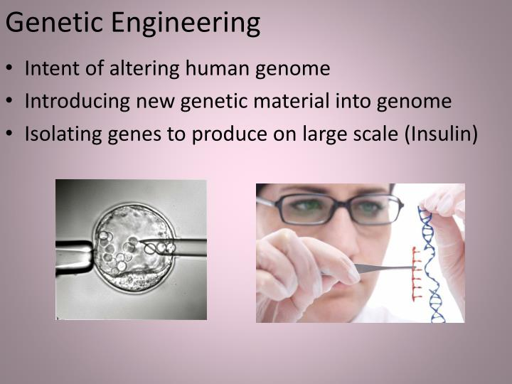 a description of genetic engineering as an altering of genes in a particular species Genetic engineering/ recombinant dna technology - powerpoint ppt presentation the presentation will start after a short (15 second)  description:.