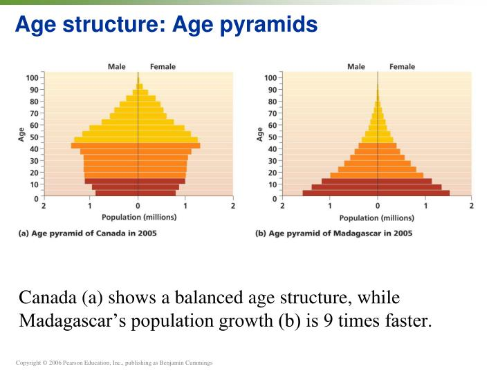 Age structure age pyramids