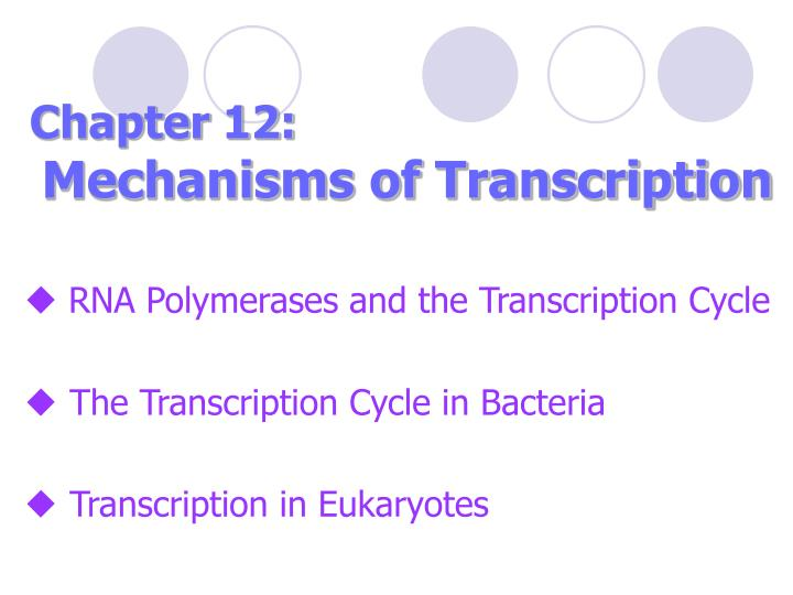 chapter 12 mechanisms of transcription n.
