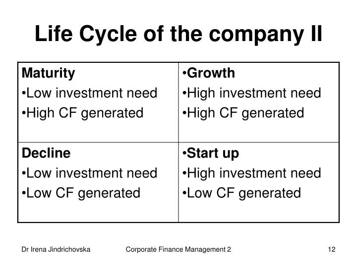 Life Cycle of the company II