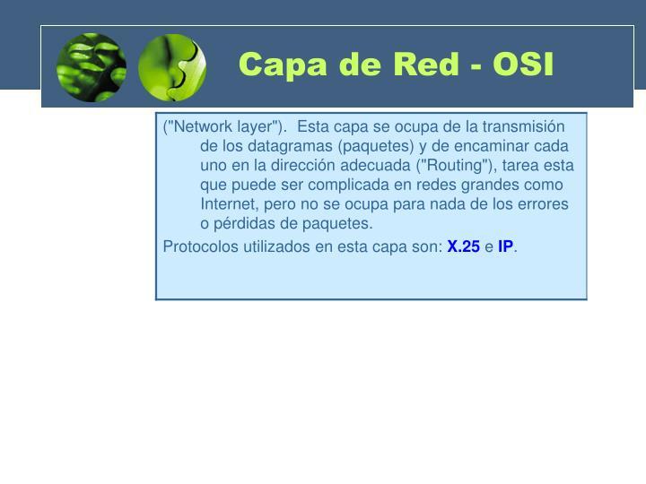 Capa de Red - OSI