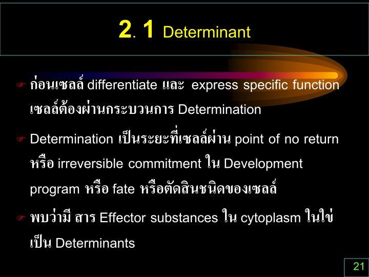 2. 1 Determinant