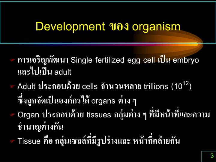 Development organism