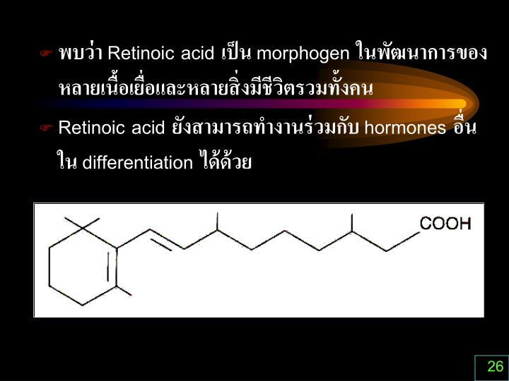 พบว่า Retinoic acid เป็น