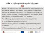 pillar ii fight against irregular migration1