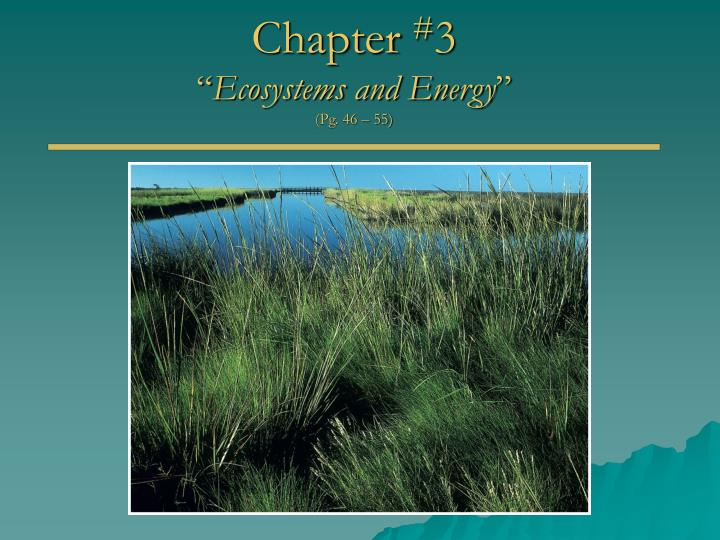 chapter 3 ecosystems and energy pg 46 55 n.