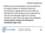ccac guidelines1