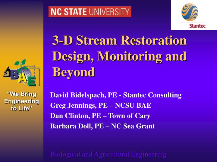 3 d stream restoration design monitoring and beyond n.