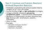 type ii cytotoxic and cytolytic reactions antibody dependent reactions
