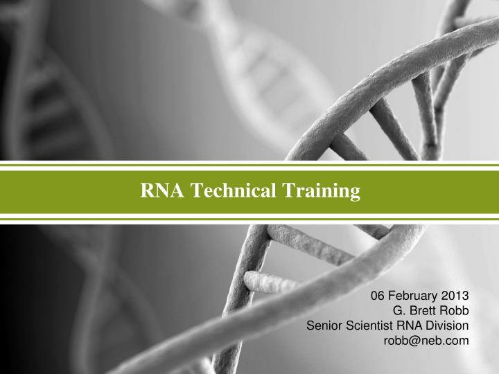 Ppt Rna Technical Training Powerpoint Presentation Free Download Id 6067297