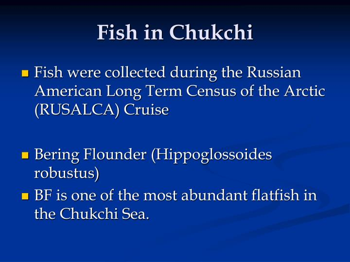 Fish in Chukchi