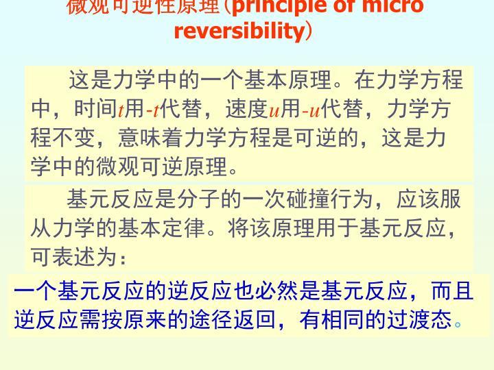 微观可逆性原理
