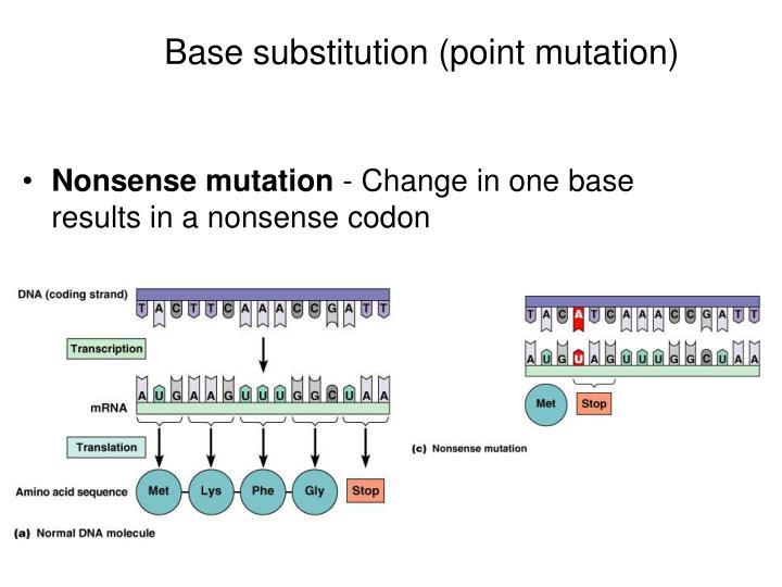 Base substitution (point mutation)