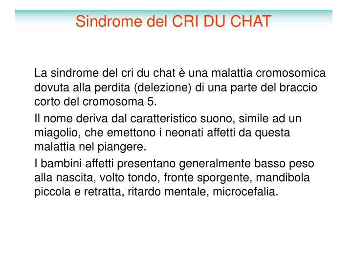 Sindrome del CRI DU CHAT