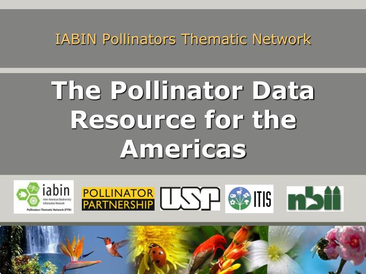 iabin pollinators thematic network n.