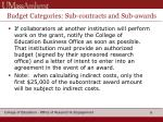 budget categories sub contracts and sub awards