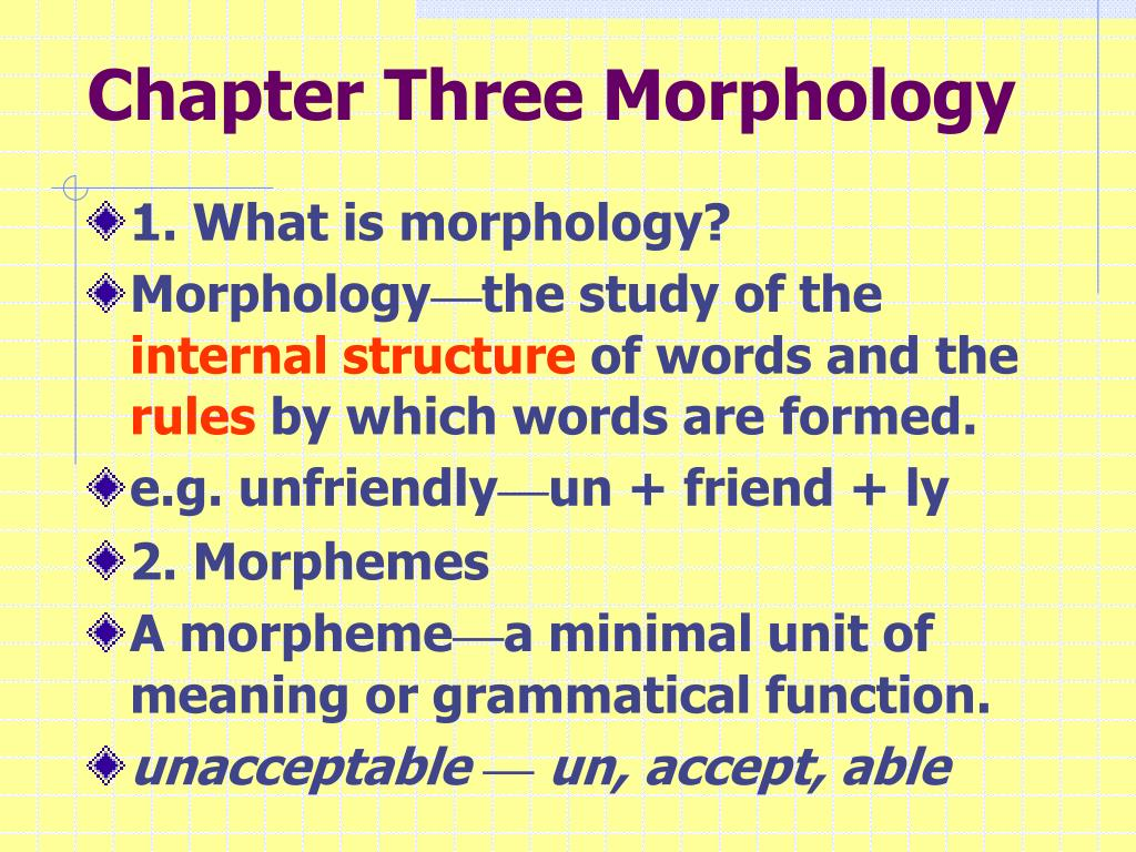 What is morphology
