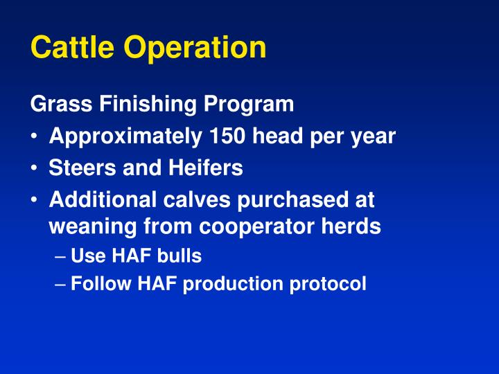 Cattle Operation