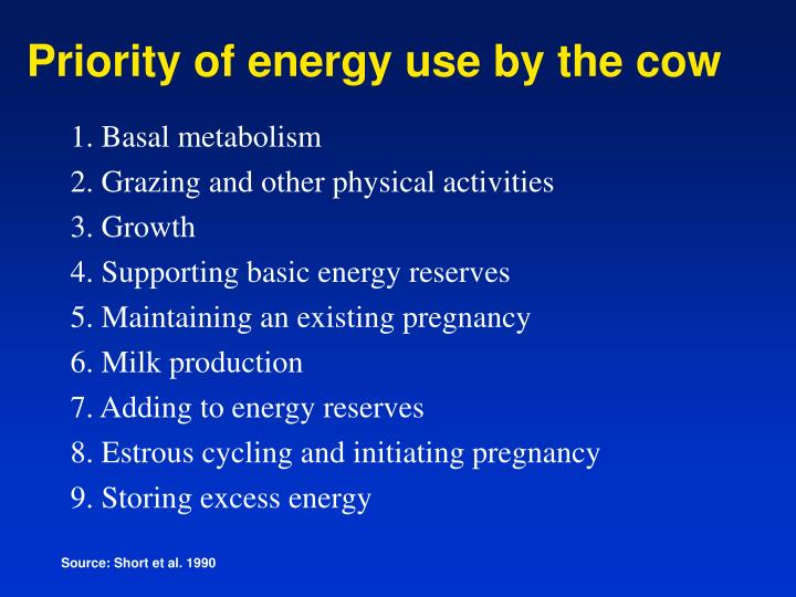 Priority of energy use by the cow