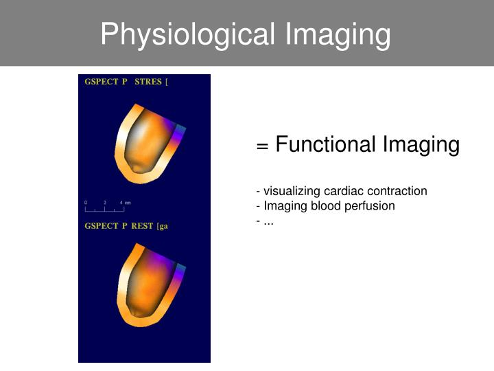 Physiological Imaging