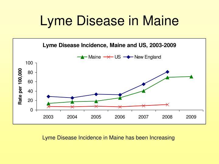 Lyme Disease in Maine