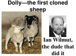dolly the first cloned sheep