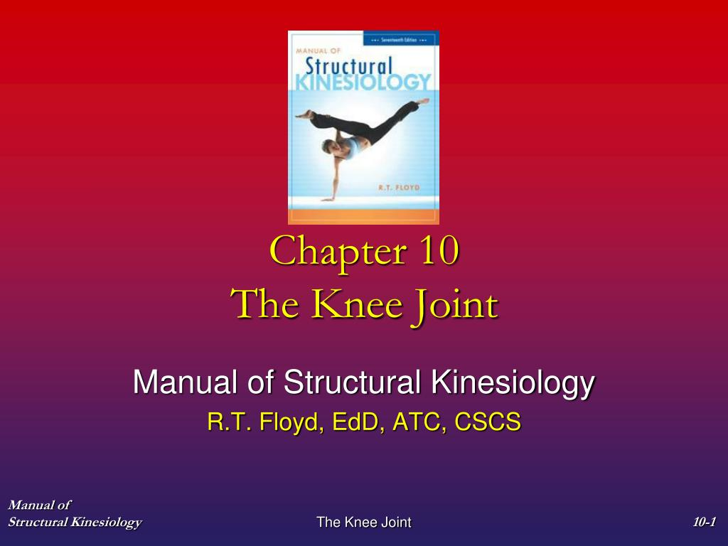 chapter 10 the knee joint n.