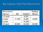 big cypress high flow recurrence