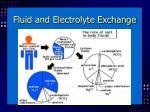 fluid and electrolyte exchange