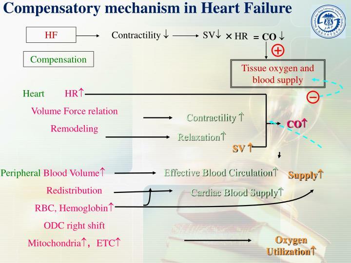 Compensatory mechanism in Heart Failure