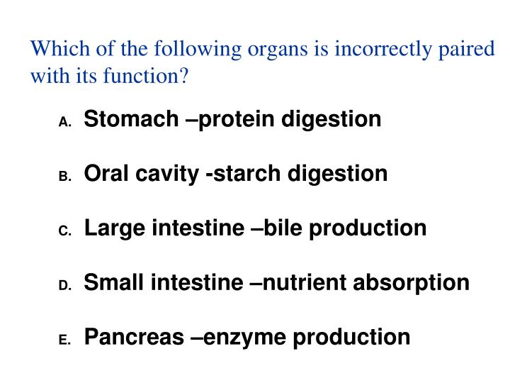 Which of the following organs is incorrectly paired with its function?